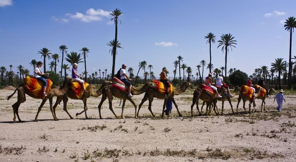 Marrakech Guided Tour with Camel Ride and Lunch Included